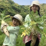 【食育 12年目】少食に悩んでいるママへ。食べない子どもと食育の話。